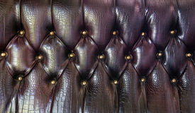 Upholstery leather pattern Stock Photo
