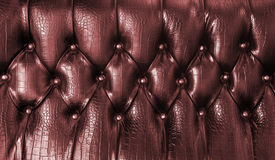 Upholstery leather pattern Stock Images