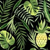 Upiększony tropikalny royalty ilustracja