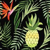 Upiększony tropikalny ilustracji