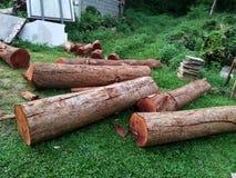 Łupka na tle drewniany trociny fotografia stock