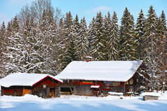 Upland alpino da exploração agrícola no inverno imagem de stock royalty free