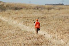 Upland Bird Hunter. In Field Stock Photos