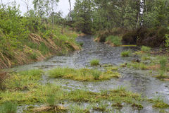 Upland moor in Southern Bavaria, Germany Stock Photo