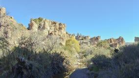 Upland Sonoran Natural Area. In Boyce Thompson Arboretum Sate Park, Arizona stock image
