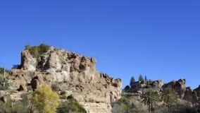Upland Sonoran Natural Area. In Boyce Thompson Arboretum Sate Park, Arizona; Copy space royalty free stock photos
