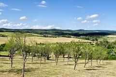 The uplands of Balaton 1 stock photos