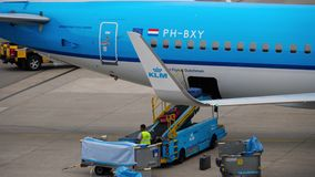 Uploading luggage onboard the aircraft. AMSTERDAM, THE NETHERLANDS - JULY 29, 2017: KLM Royal Dutch Airlines Boeing 737 PH-BXY at uploading luggage onboard stock video footage