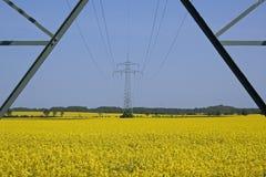 Uppåtriktad sikt av kablar på pylonen Arkivfoton