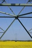 Uppåtriktad sikt av kablar på pylonen Arkivbilder