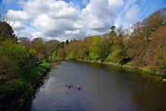 Upp floden Royaltyfri Fotografi