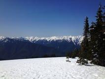 Upp på berget Royaltyfri Fotografi