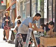 Uppassare Working på New York City Café royaltyfria bilder
