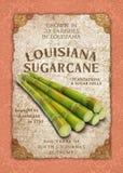 Uppehälle för damast konstverk för bakgrund för Louisiana livNew Orleans kultur sydlig arkivfoton