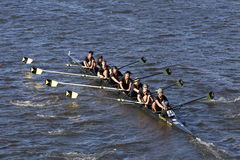 Upper Arlington Crew races in the Head of Charles Regatta Men`s Youth Eight Stock Image