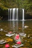 Upper Butte Creek Falls Oregon 3 Royalty Free Stock Images