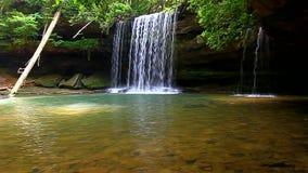 Upper Caney Creek Falls Alabama stock video