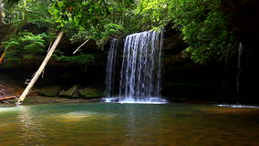 Upper Caney Creek Falls. Beautiful Caney Creek Falls in the William B Bankhead National Forest of Alabama stock video footage