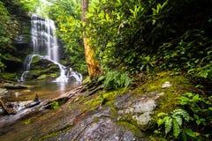 Upper Catabwa Falls 2 royalty free stock photography