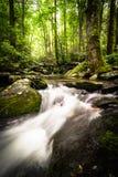 Upper Catabwa Falls 6 royalty free stock photography