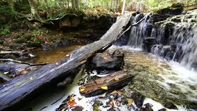 Upper Chapel Falls in the Upper Peninsula of Michigan. Chapel River on the Chapel Loop Trail at Pictured Rocks National Lakeshore. This small waterfall is Upper stock footage