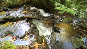 Upper Chapel Falls in the Upper Peninsula of Michigan. Upper Chapel Falls surrounded by autumn colors. This waterfall is located at Pictured Rocks National stock video footage