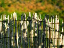 The top of bamboo reed fence. The top of old and damaged bamboo reed fence Royalty Free Stock Image