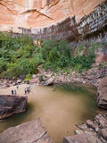 Upper Emerald Pool at Zion National Park Stock Photography