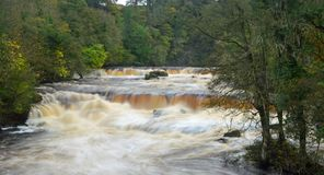 Upper Falls of Aysgarth Falls from Yore Bridge, Aysgarth. In Mid-Wensleydale, Yorkshire Dales National Park. After a lot of rain the River Ure is flowing fast stock photo