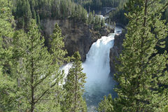 Upper Falls, Grand Canyon of the Yellowstone Stock Photo