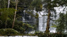 Russell falls. The upper falls of russell falls in mt field national park, tasmania stock video footage