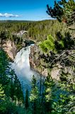 Upper falls waterfall on the Yellowstone river Royalty Free Stock Image