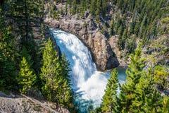 Upper falls of Yellowstone Canyon Stock Image