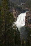Upper Falls of the Yellowstone Stock Photos