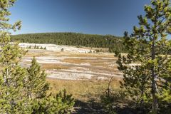 Upper Geyser Basin Old Faithful from Continental Divide Trail. Famous geyser attraction in Yellowstone known for its hot-water eruptions on a consistent royalty free stock photo