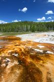 Upper Geyser Basin of Yellowstone. Bright orange colors of thermophilic bacteria in the Upper Geyser Basin of Yellowstone National Park Stock Photo
