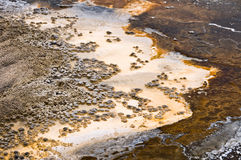 Upper Geyser basin, Yellowstone National park Stock Image