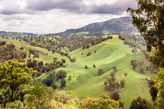 Upper Hunter Valley, NWS, Australia Royalty Free Stock Photography