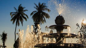 Upper jet of round cascade fountain sprays in tropical park stock video footage