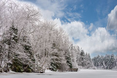 Upper Knox Dam. Knox Dam PEI after fresh snow fall.  Frozen lake with trees laden in fresh snow Royalty Free Stock Images