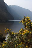 The Upper Lake. At Glendalough Monastic Site - Wicklow Mountains National Park stock photography