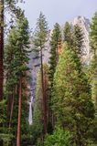 Upper and Lower Yosemite Falls Stock Photos