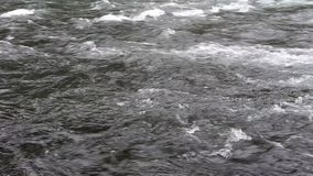Upper McKenzie River HD Video stock video footage