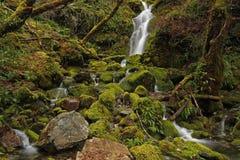 (upper) Merlin Falls Rocky Royalty Free Stock Photography