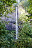 Upper Multnamah Falls. Upper Multnomah Falls on the Oregon side of the Columbia River Gorge, the highest waterfall in Oregon and, according to the US Forest Stock Photos