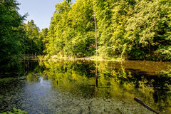 Upper pond, Kytayiv, Kiev Stock Image