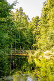 Upper pond, Kytayiv, Kiev Royalty Free Stock Photos