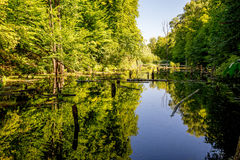 Upper pond, Kytayiv, Kiev Stock Photography