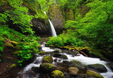 Upper ponytail falls Royalty Free Stock Images