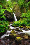 Upper Ponytail Falls Royalty Free Stock Image